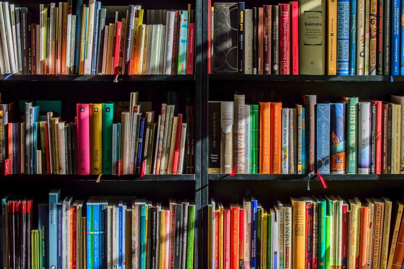 librerias vs amazon